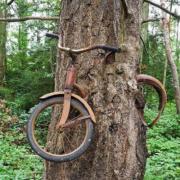 Biztonságos biciklilakat