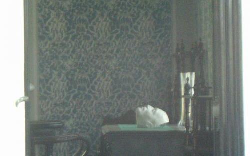 Ady halotti maszkja, ablakon benézve