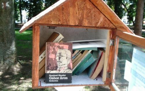 Könyvkuckó a Károlyi kastély parkjában