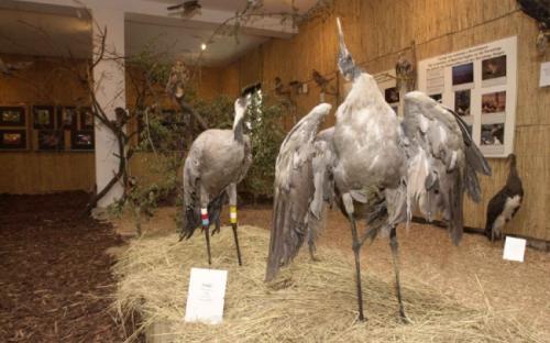 Látványos kiállítás is várja az érdeklődő turistákat