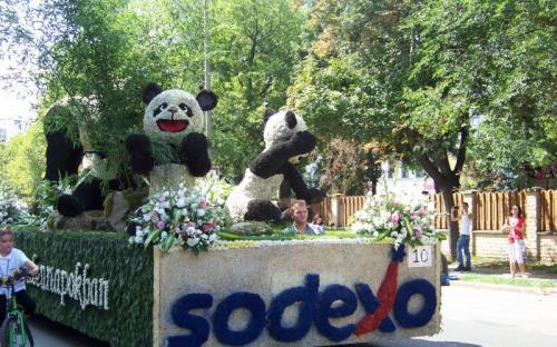 A Sodexo pandái virágból