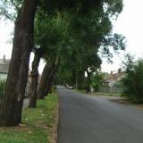 Ruyter utca